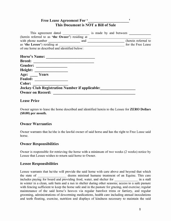 Horse Lease Agreements Template Unique Horse Template Printable