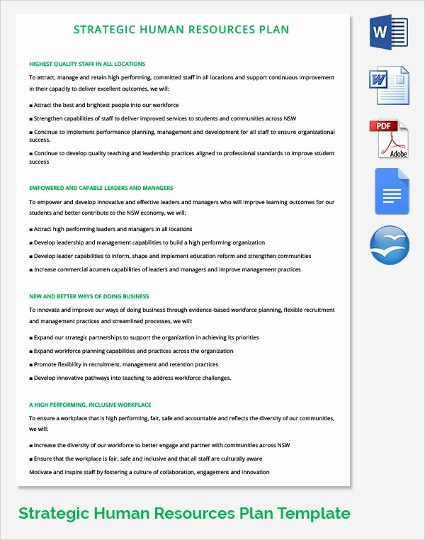 Human Resource Policy Template Inspirational 17 Sample Hr Strategy Templates
