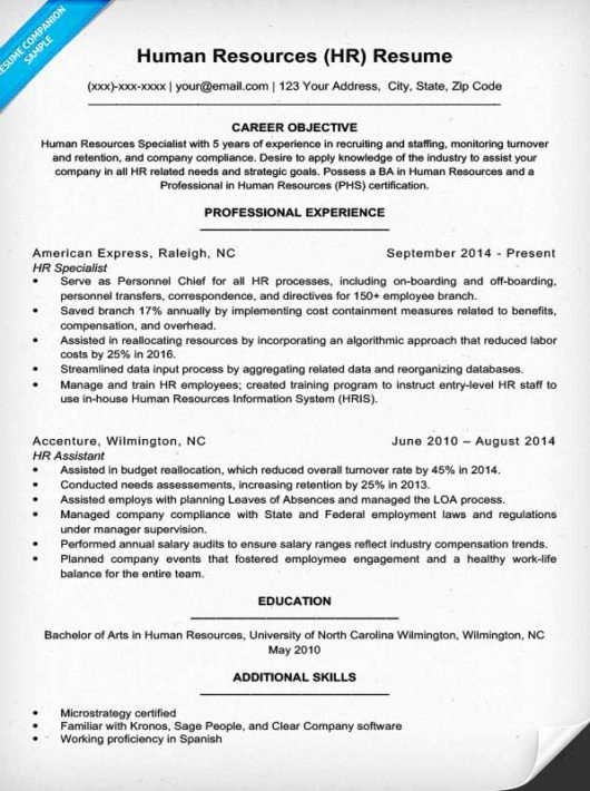 Human Resource Resume Template Beautiful Human Resources Resume Sample & Writing Tips