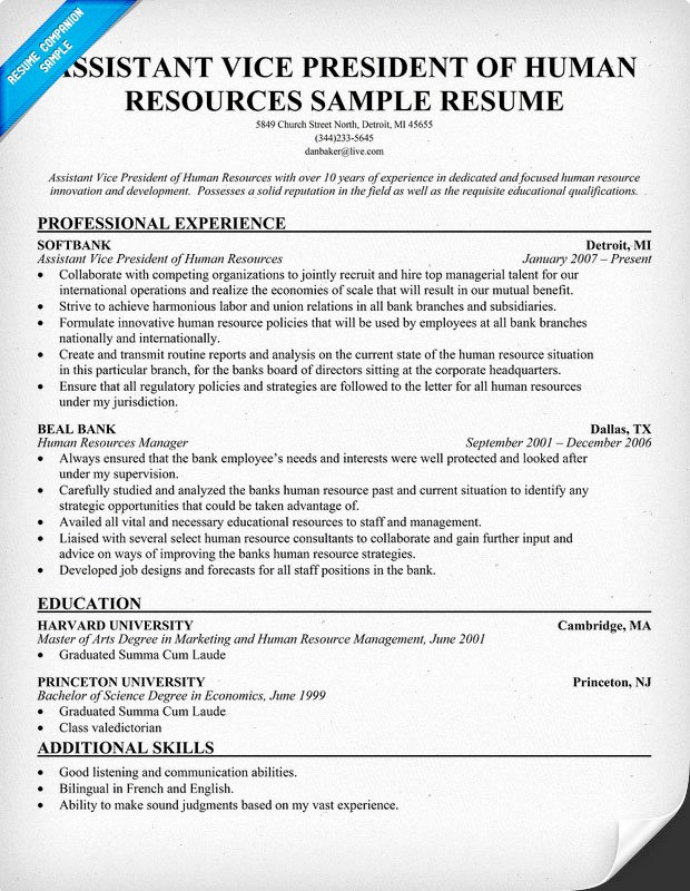 Human Resource Resume Template Best Of Sample Cover Letter Sample Resume Vp Human Resources