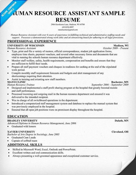 Human Resource Resume Template Unique Human Resource assistant Resume Resume Panion Hr