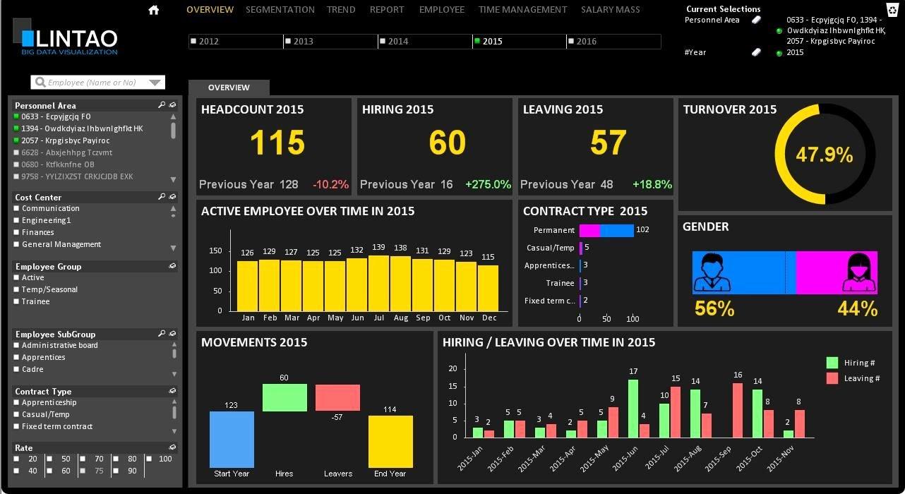 Human Resources Dashboard Template Elegant Hr Dashboard