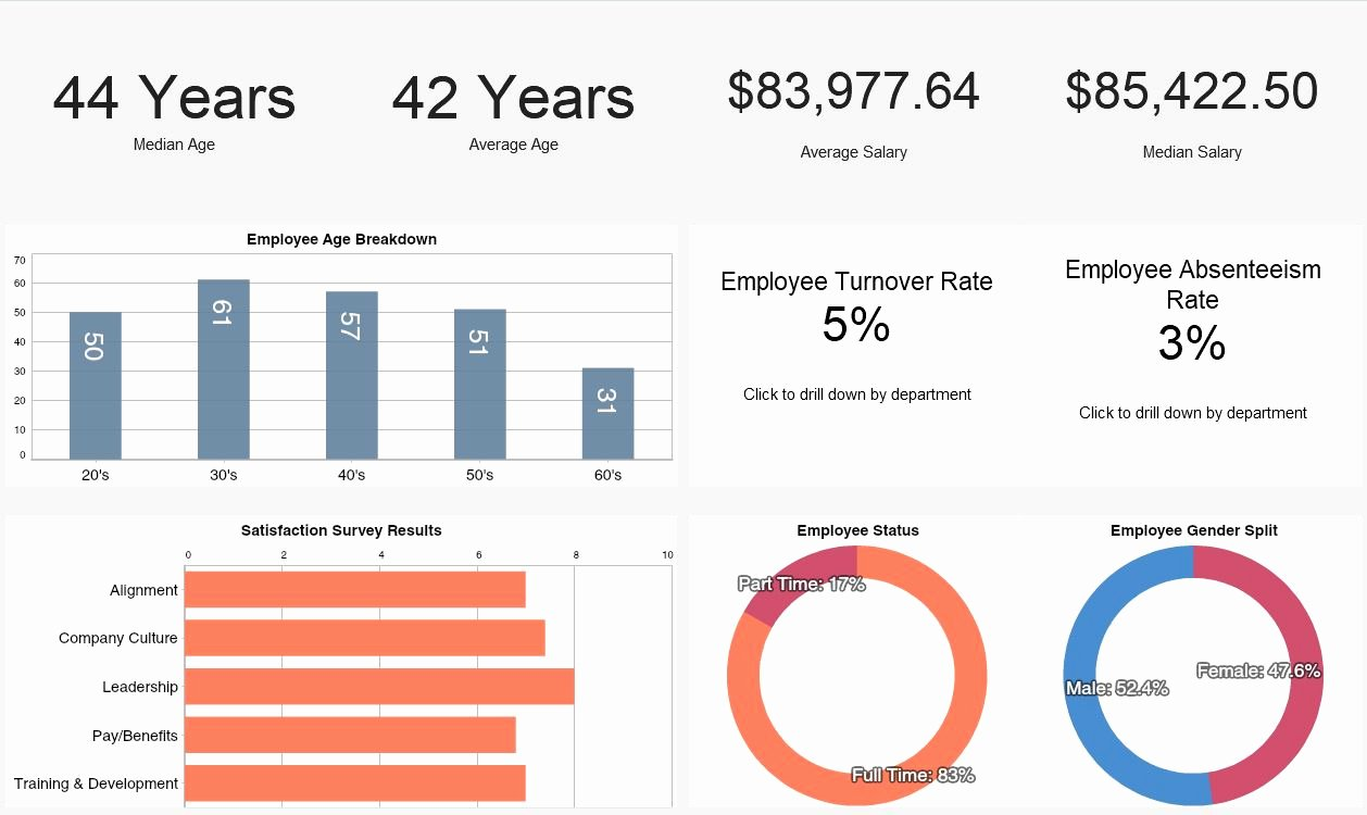 Human Resources Dashboard Template Inspirational Human Resources Dashboards