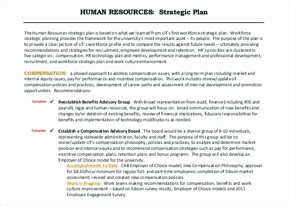 Human Resources Documents Template Inspirational Example Human Resources Strategic Plan Free Template