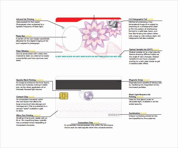 Id Card Template Word Inspirational Id Card Template 19 Download In Psd Pdf Word