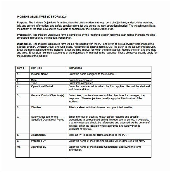 Incident Action Plan Template Luxury 6 Incident Action Plan Templates Doc Pdf
