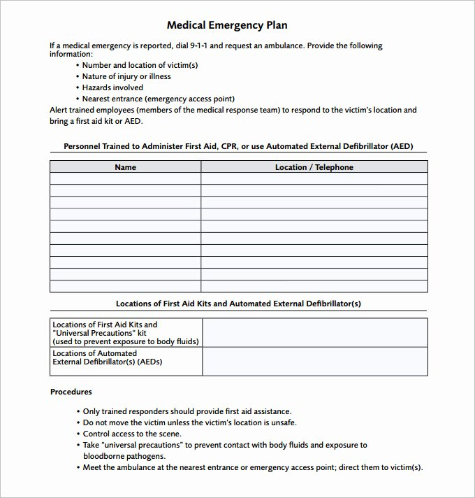Incident Response Plan Template Unique 14 Emergency Action Plan Template Word Excel Pdf