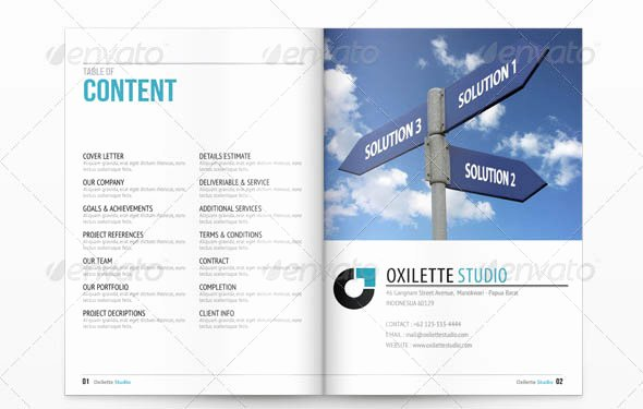 Indesign Business Plan Template Unique 20 Cool Indesign Business Proposal Templates – Desiznworld