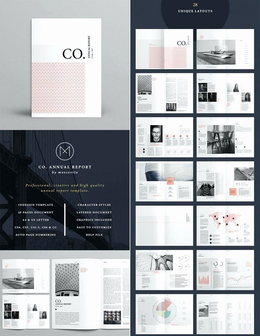 Indesign Business Plan Template Unique Indesign Business Plan Template Resume Template Luxury