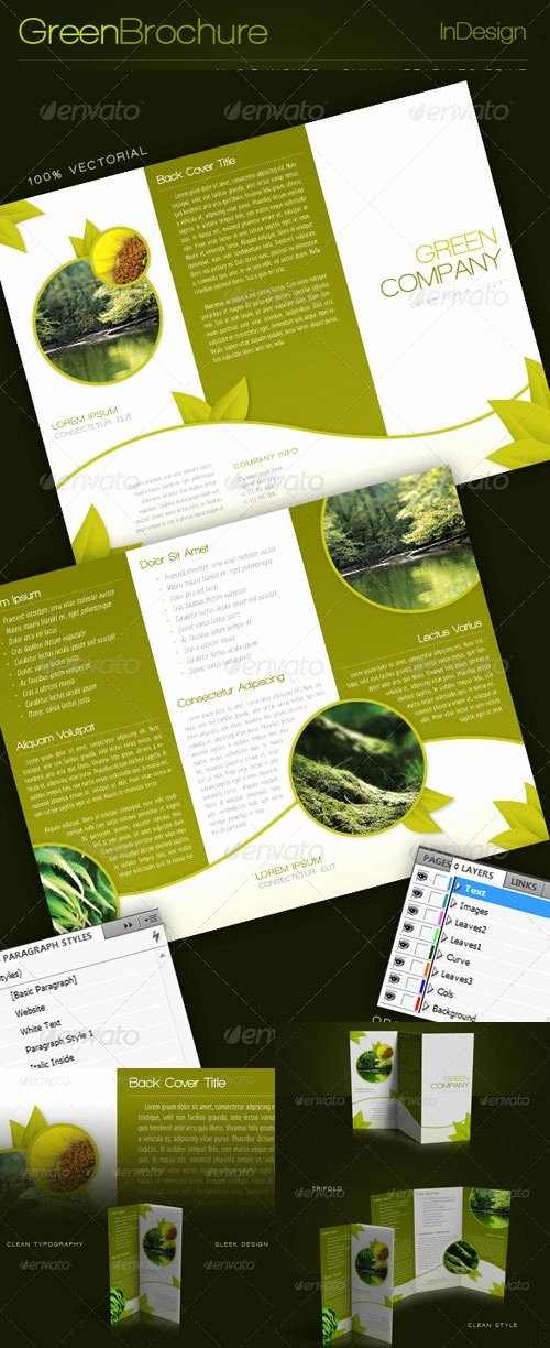 Indesign Trifold Brochure Template Fresh 53 Best Images About Vector Graphics On Pinterest