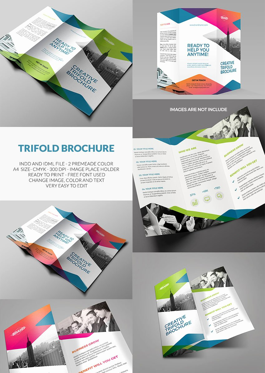 Indesign Trifold Template Free Luxury 20 Best Indesign Brochure Templates for Creative