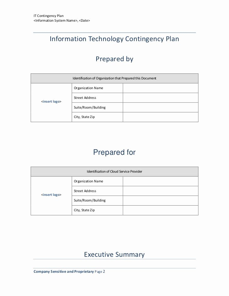 Information Technology Planning Template Luxury Information Technology Contingency Plan Template