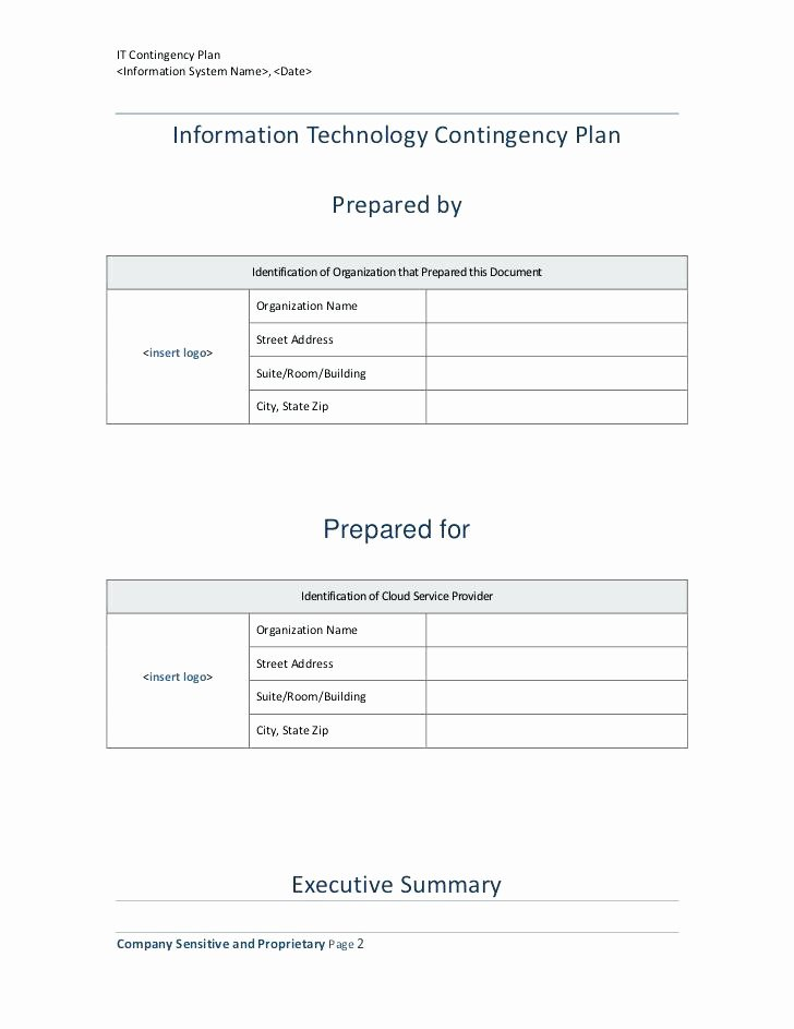 Information Technology Planning Template Luxury Technology Plan Template – Arabnormafo