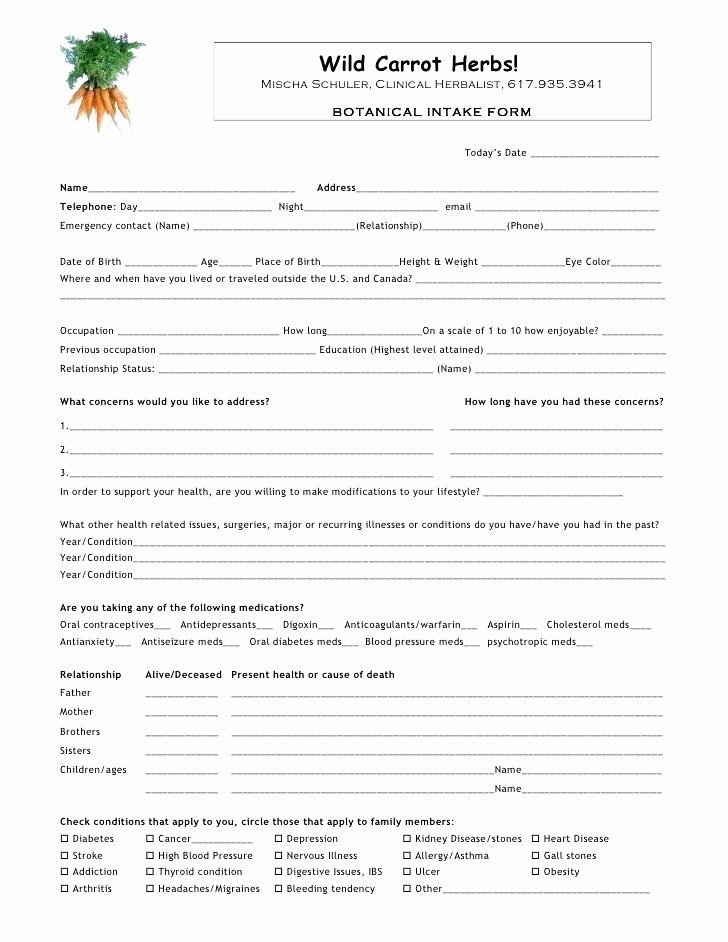 Intake form Template Word Inspirational Massage Client Intake form Template Food Pantry Sheet Free