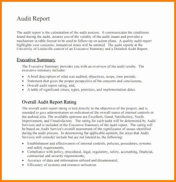 Internal Audit Report Template Beautiful 9 Internal Audit Report Sample