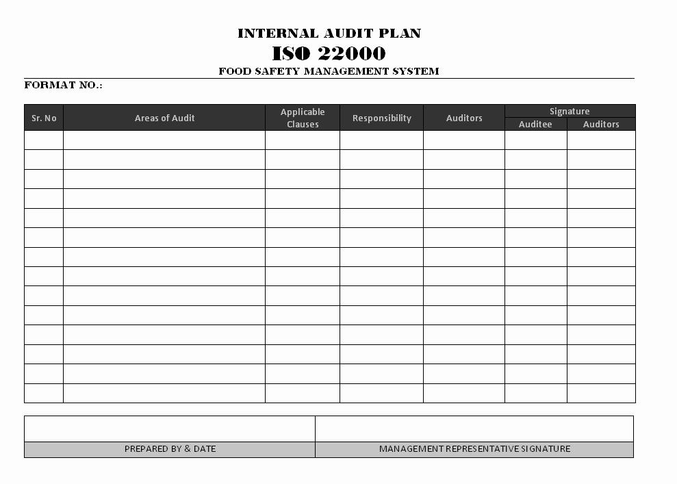 Internal Audit Report Template Elegant Audit Plan Template Excel