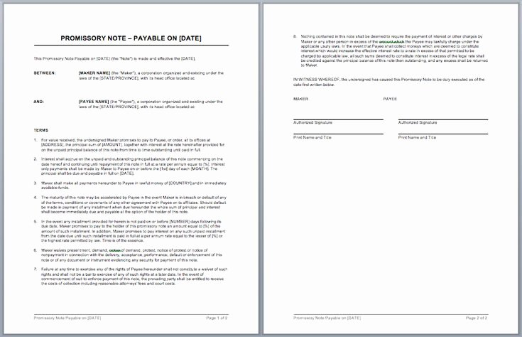 International Promissory Note Template Awesome Best 25 Promissory Note Ideas On Pinterest