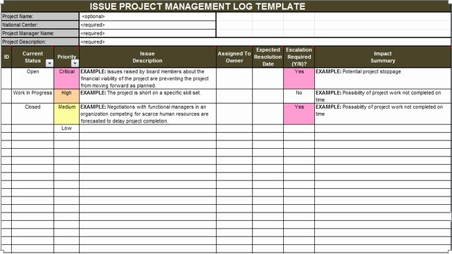 Issue Log Template Excel Luxury Download issue Project Management Templates