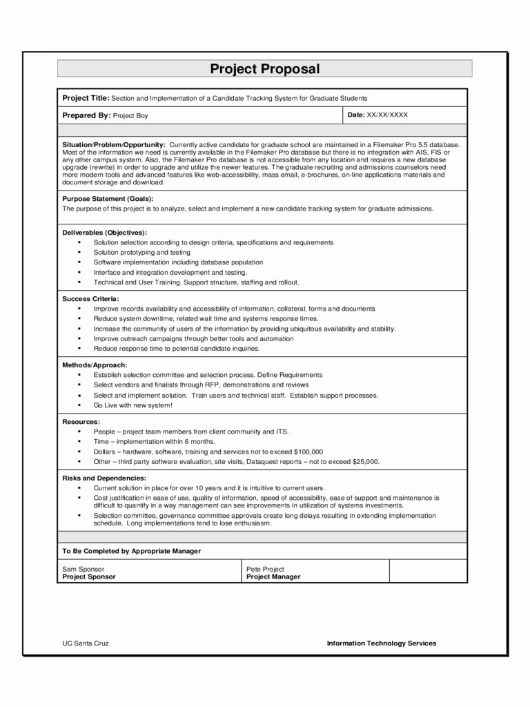 It Project Proposal Template Inspirational 9 software Project Proposal Examples Pdf