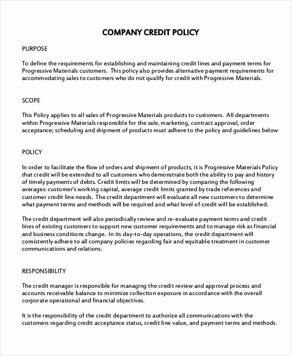 It Security Policy Template Luxury Pany Policy Template 10 Free Pdf Documents Download