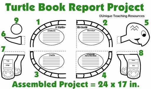 Kindergarten Book Report Template Beautiful Turtle Book Report Project Templates Printable