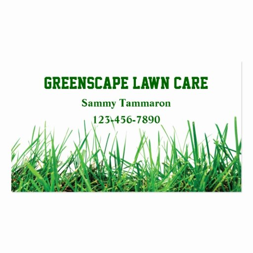 Landscape Business Card Template Lovely Lawn Care and Landscaping
