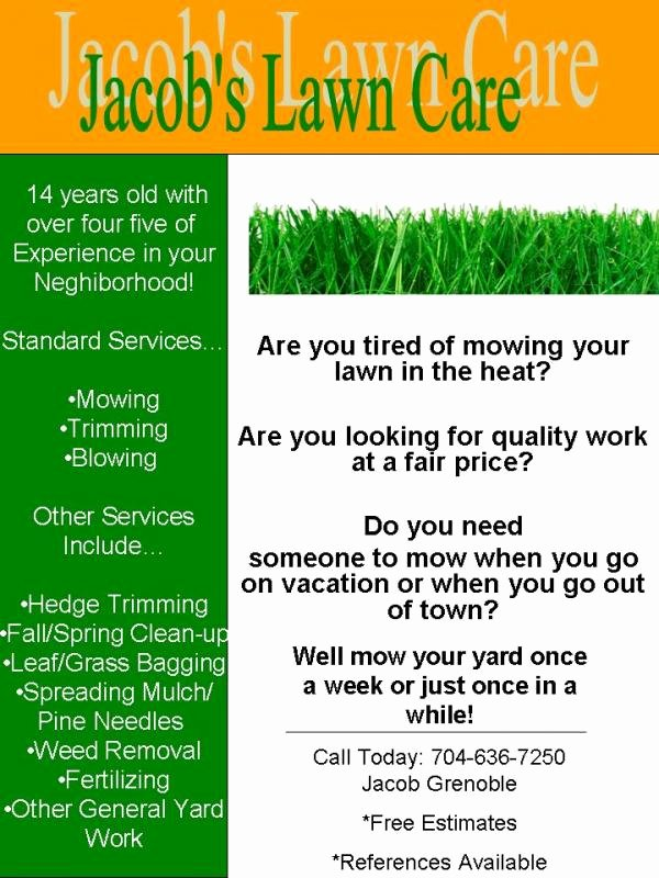 Lawn Care Flyer Template Unique My Lawn Care Flyer What Do You Think