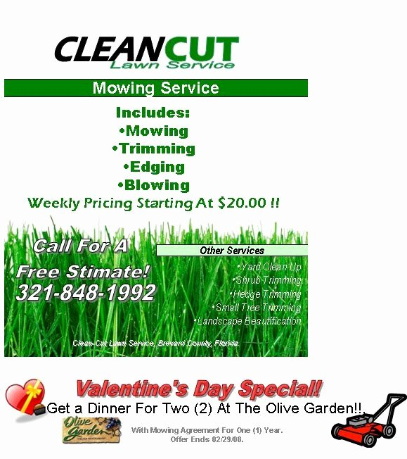 Lawn Mower Flyer Template Lovely Lawn Care Flyer Template Free Best Examples Lawn Care