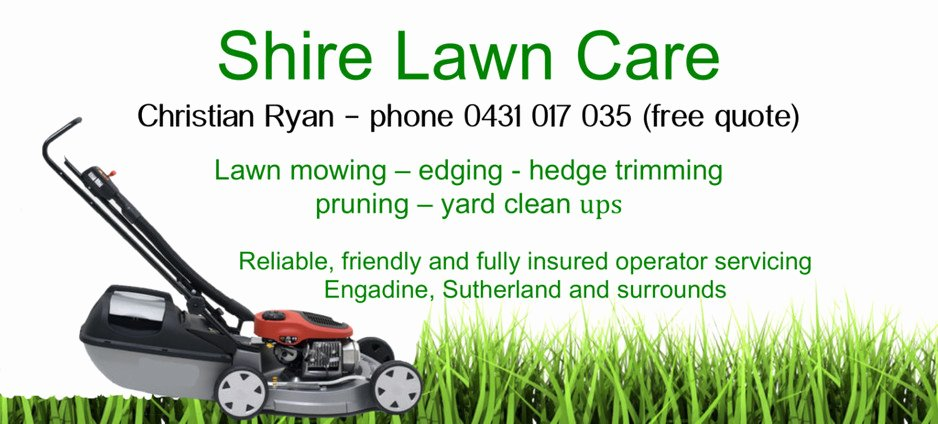 Lawn Mower Flyer Template Luxury Lawn Care Flyer