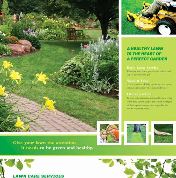 Lawn Service Flyer Template Fresh 29 Lawn Care Flyers Psd Ai Vector Eps