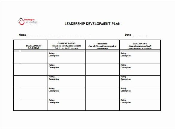 Leadership Development Plan Template Beautiful 14 Development Plan Templates Free Sample Example
