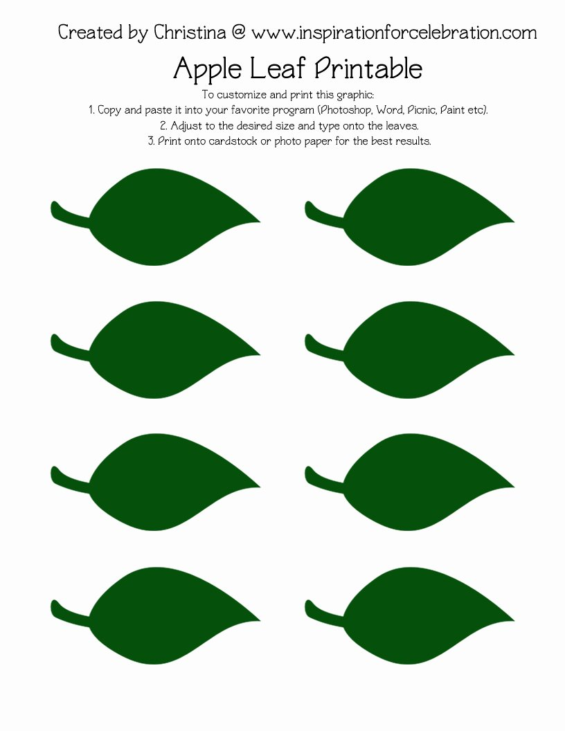 Leaf Template with Lines Best Of Leaf Drawing Template at Getdrawings