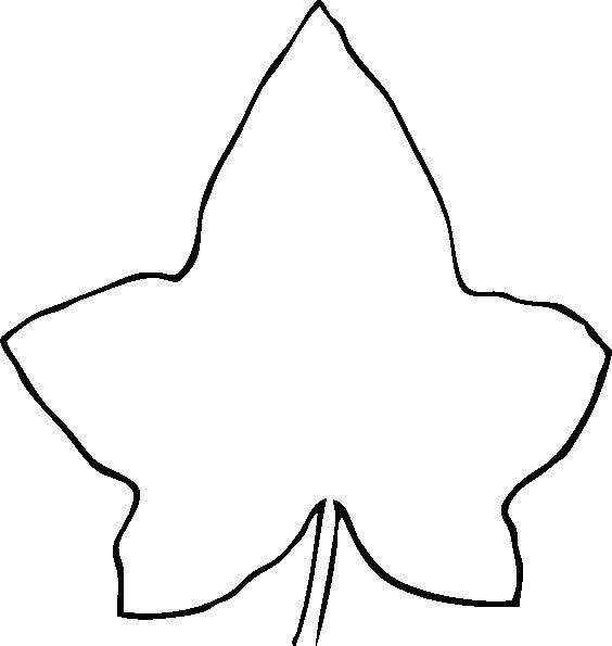Leaf Template with Lines Fresh Line Drawing Leaf Clip Art at Clker Vector Clip Art