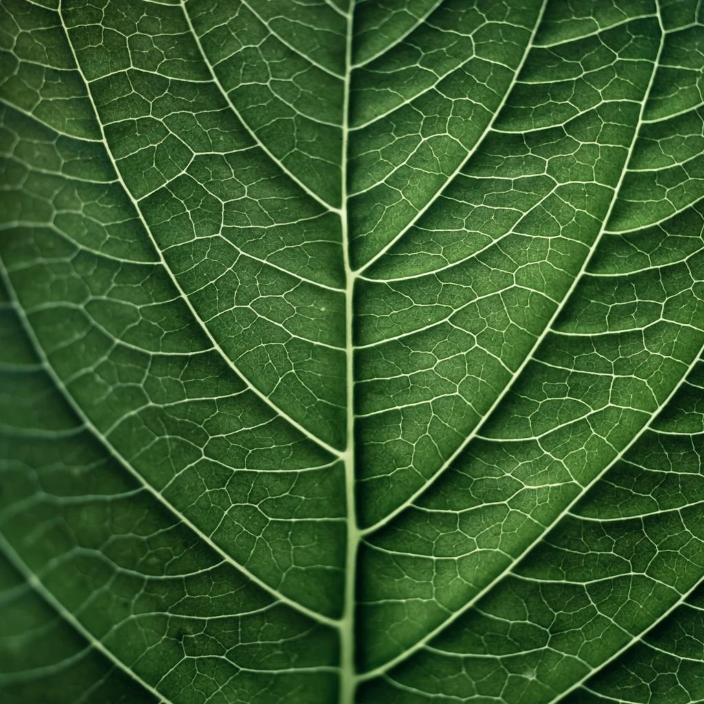 Leaf Template with Lines Fresh organic Lines Lineas Pinterest