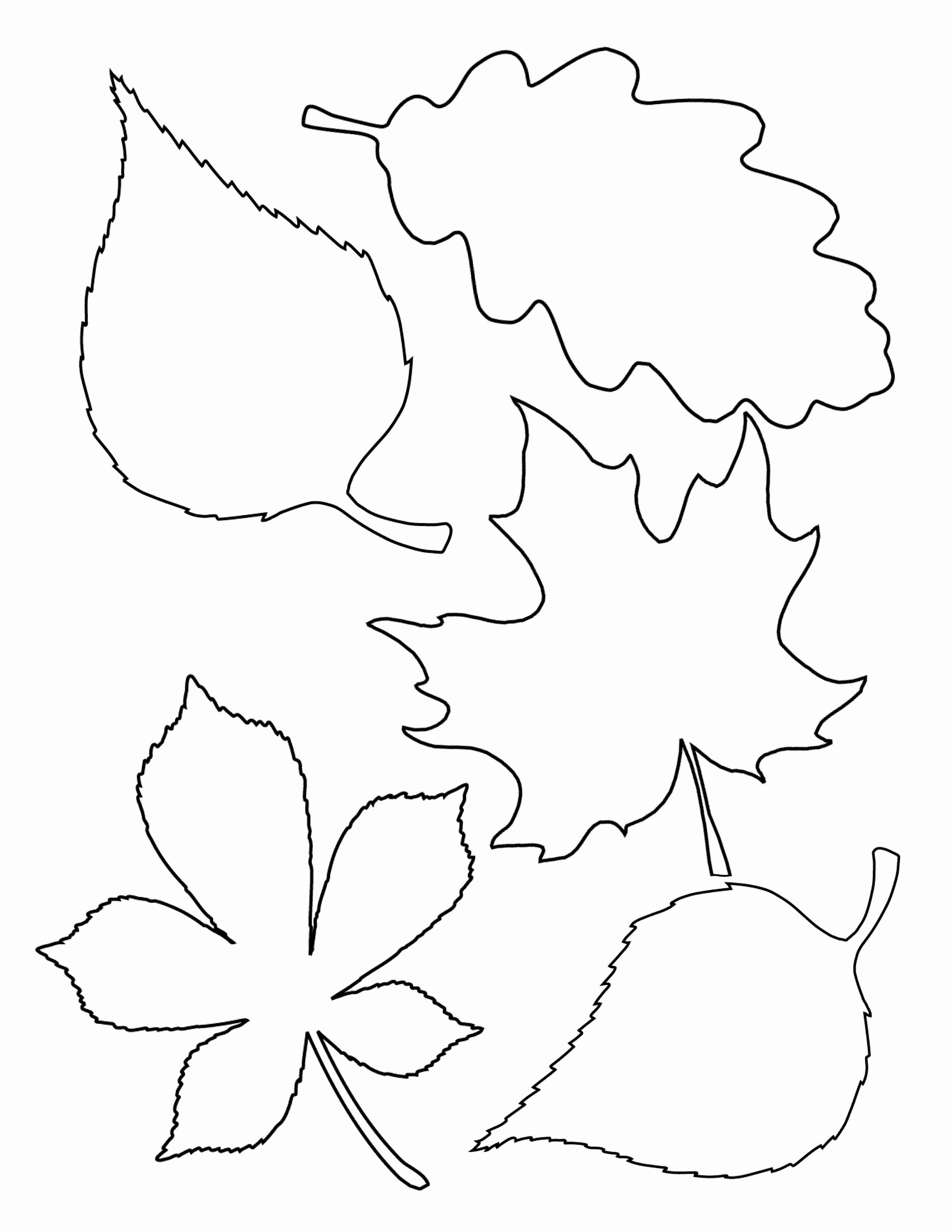 Leaf Template with Lines Lovely 4 Easy Fall Garlands A Beautiful Mess