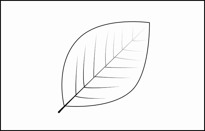 Leaf Template with Lines Luxury Leaf Template with Lines Leaf Template Printable and