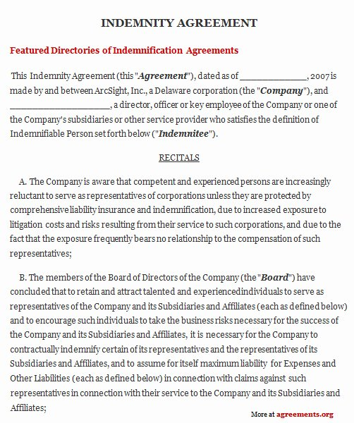 Letter Of Indemnification Template Lovely Indemnity Agreement Sample Indemnity Agreement Template