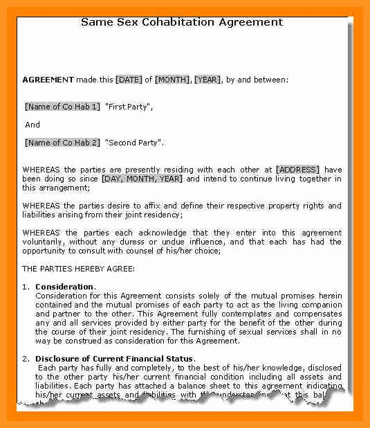 Living Agreement Contract Template Inspirational 4 5 Living Agreement Contract Template