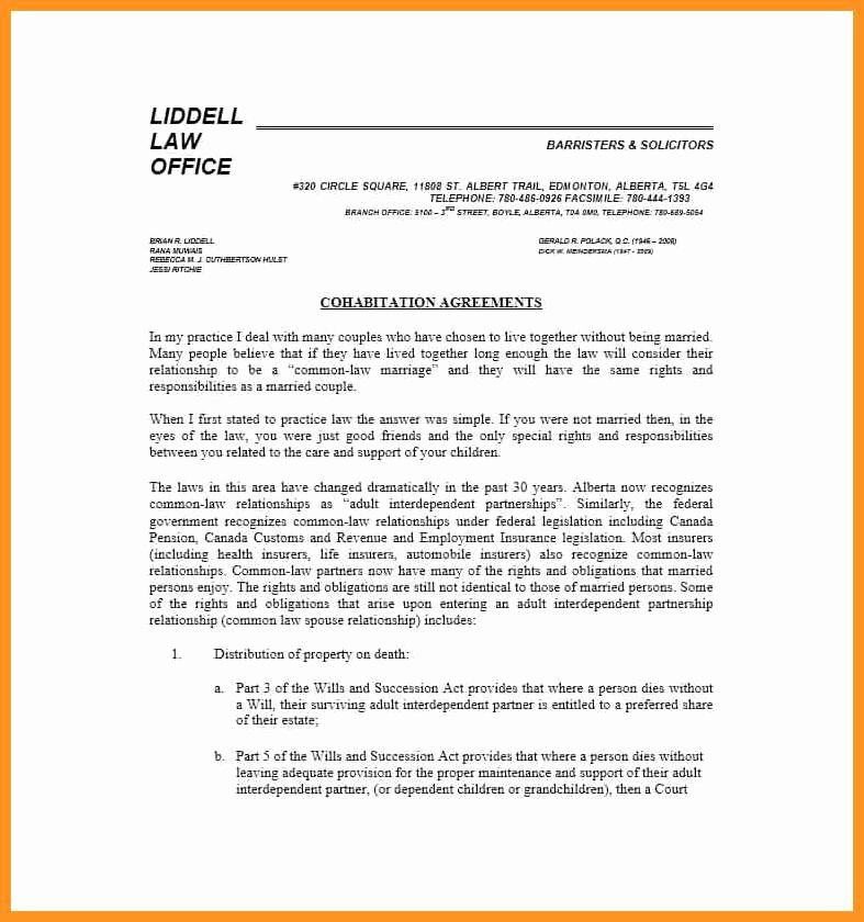 Living Agreement Contract Template Luxury 4 5 Living Agreement Contract Template
