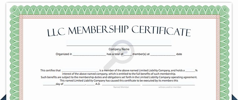 Llc Member Certificate Template Beautiful Llc Membership Certificate Free Limited Liability