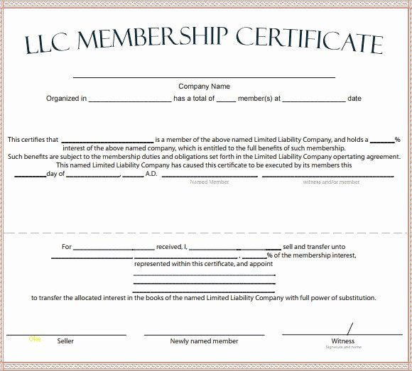 Llc Member Certificate Template Best Of Sample Membership Certificate