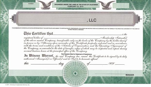 Llc Member Certificate Template Best Of Should We issue Llc Membership Certificates the High
