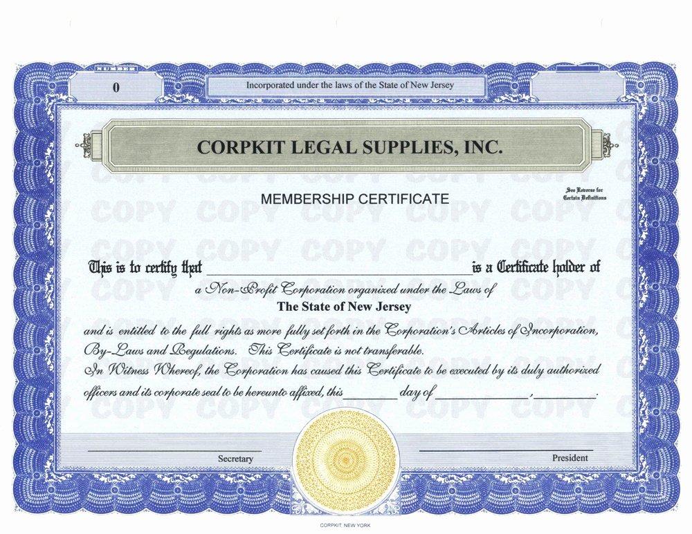Llc Member Certificate Template New Llc Member Certificate Template Llc Member Certificate