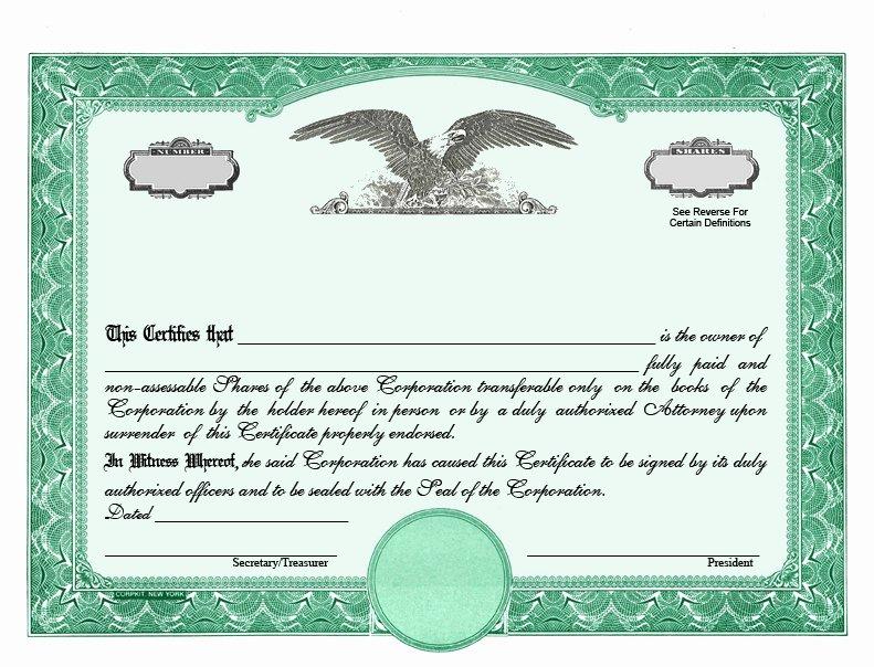 Llc Membership Certificate Template Awesome Llc Stock Certificate Template Free Templates Resume