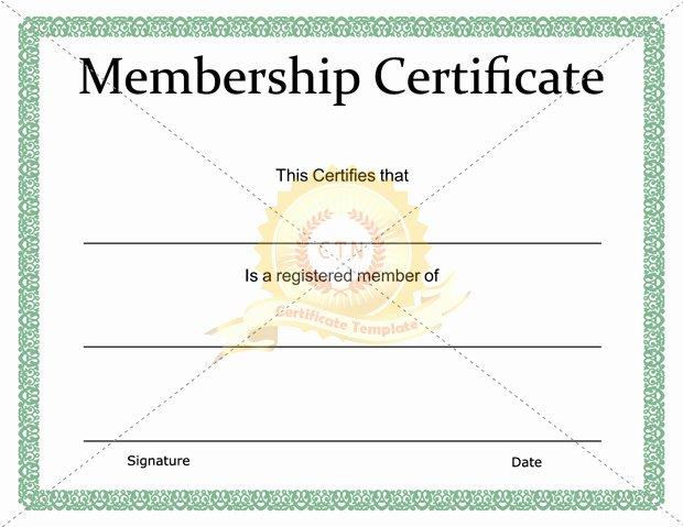 Llc Membership Certificate Template Elegant Membership Certificate Template