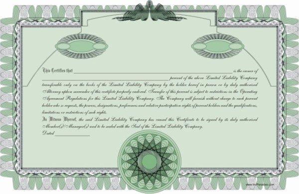 Llc Membership Certificate Template Luxury Llc Membership Certificate