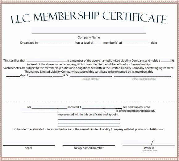 Llc Membership Certificate Template Unique Membership Certificate Template 15 Free Sample Example