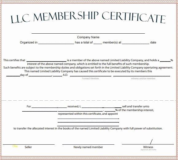 Llc Membership Certificate Template Unique Sample Membership Certificate