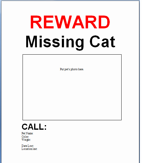 Lost Cat Flyer Template Elegant 21 Free Missing Cat Poster Template Word Excel formats