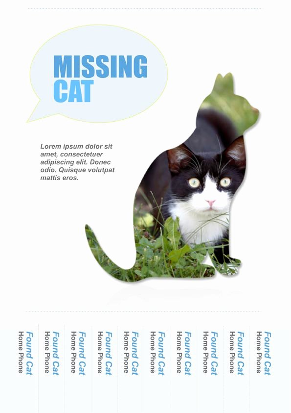 Lost Cat Flyer Template New Pages Templates Brochures Calendars Flyers Greeting Cards